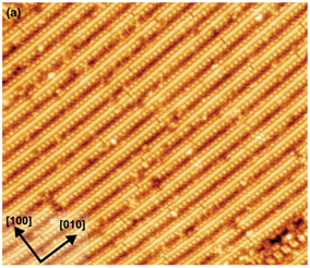 STM image (55 nm width) showing oxide nanowires on the SrTiO3 (001) surface.