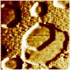 """STM image of 20 x 20 nm2 recorded on Rh(111) top facet of a Rh nanocrystallite supported on TiO2(110) surface and encapsulated by TiOx>sub> ultrathin oxide layer (hexagonal """"wagon wheel"""" structure – Z. Majzik, N. Balázs, A. Berkó: J Phys Chem C 115 (2011) 9535 ).  Deposition  of Au  resulted in mono and bilayer Au nanocrystallites resistant of encapsulation."""